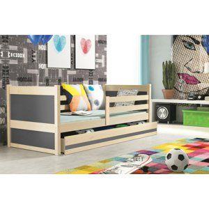 BMS Detská posteľ RICO 1 / BOROVICA 200x90 Farba: Sivá