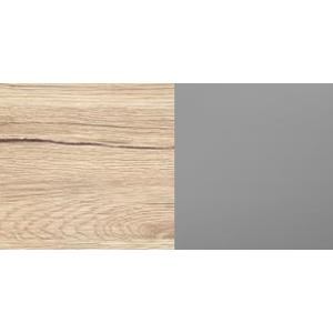 ArtMadex Šatníková skriňa Dione 4 panely so sklom Farba: Dub san Remo / popol
